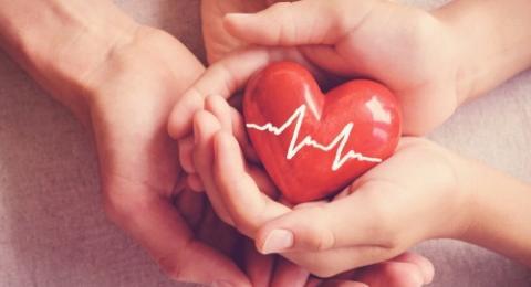 Beberapa fakta unik mengenai jantung manusia