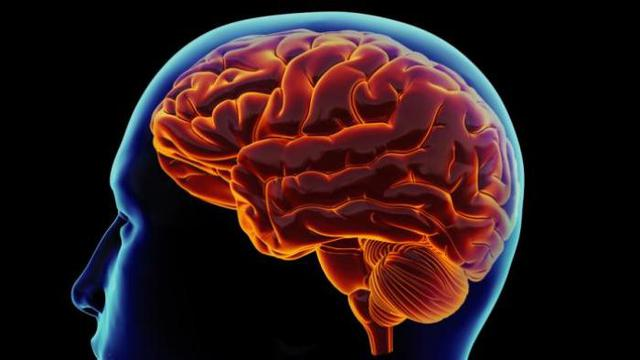 Beberapa cara Mempertajam Otak dan Mencegah Pikun
