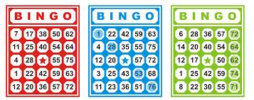 Tentukan Situs Bingo Palsu